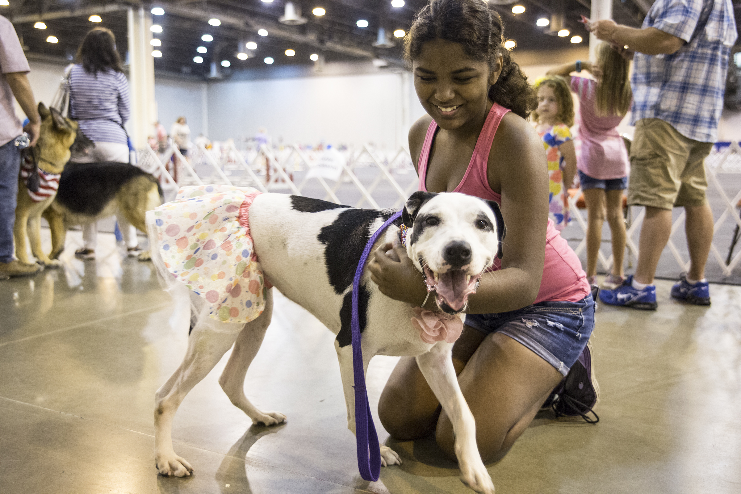 2020 American Rescue Dog Show.Home The Houston World Series Of Dog Shows